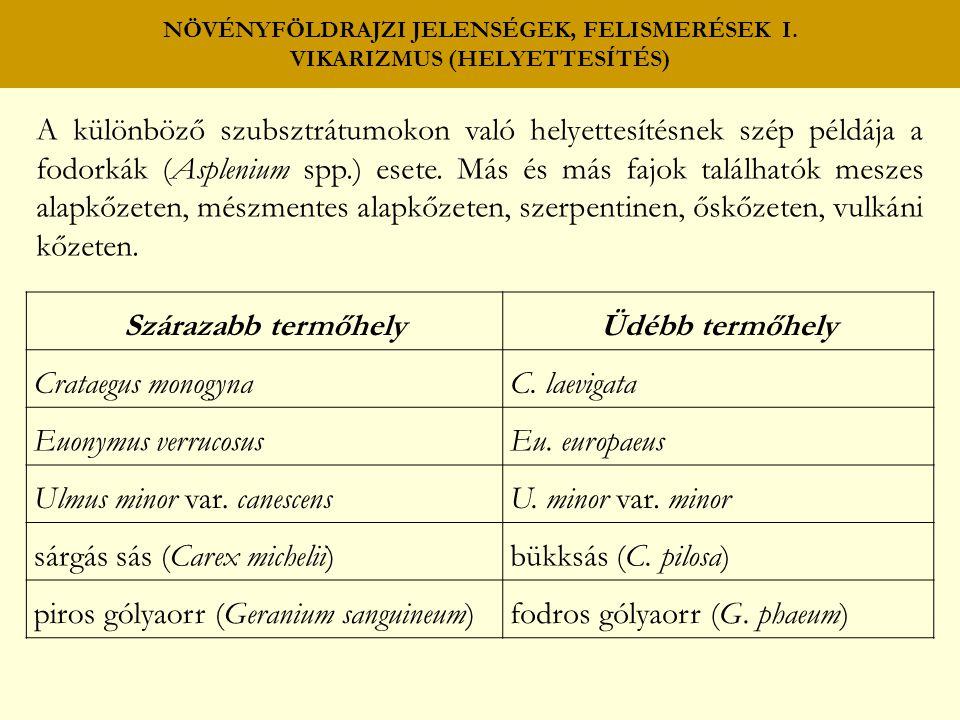 NÖVÉNYFÖLDRAJZI JELENSÉGEK, FELISMERÉSEK I. VIKARIZMUS (HELYETTESÍTÉS) A különböző szubsztrátumokon való helyettesítésnek szép példája a fodorkák (Asp