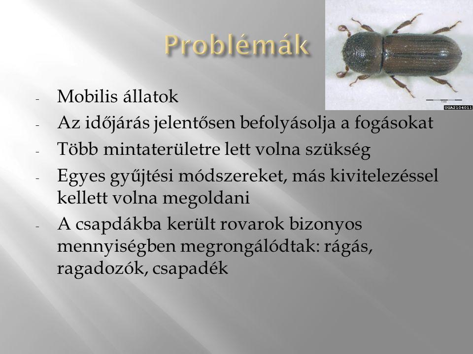 - Mobilis állatok - Az időjárás jelentősen befolyásolja a fogásokat - Több mintaterületre lett volna szükség - Egyes gyűjtési módszereket, más kivitel