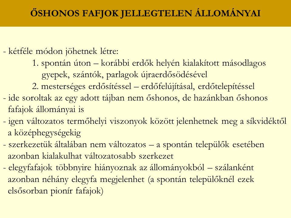 ŐSHONOS FAFJOK JELLEGTELEN ÁLLOMÁNYAI - kétféle módon jöhetnek létre: 1.