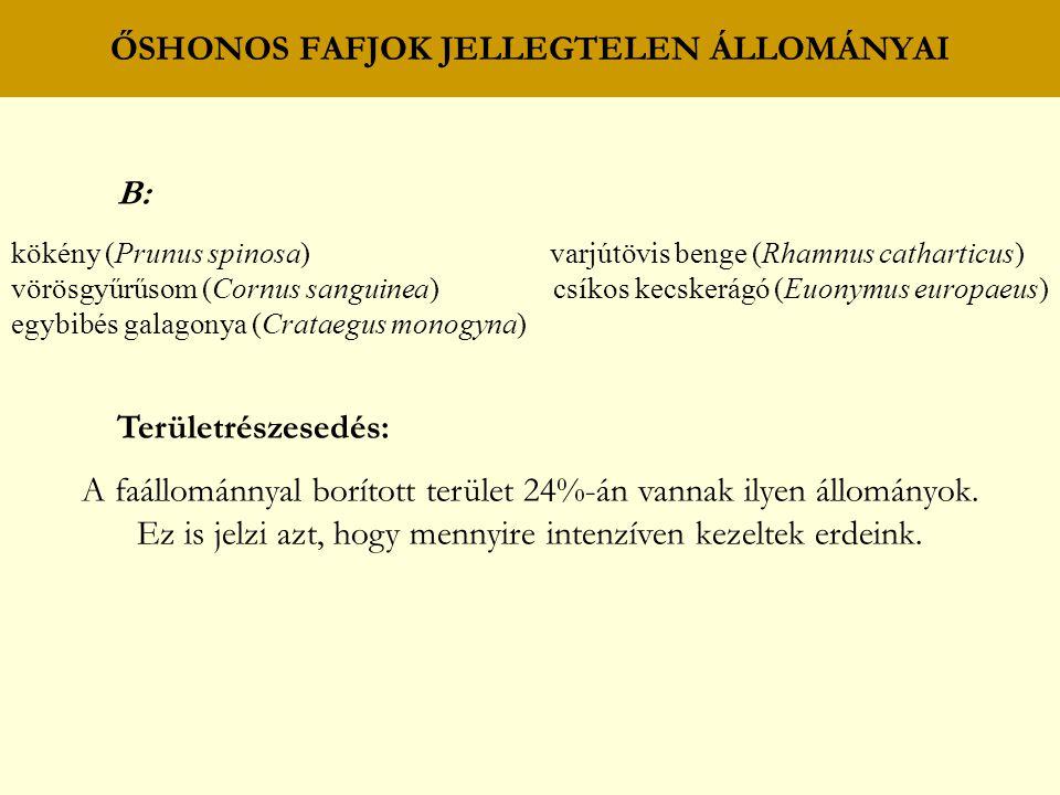 ŐSHONOS FAFJOK JELLEGTELEN ÁLLOMÁNYAI B: kökény (Prunus spinosa) varjútövis benge (Rhamnus catharticus) vörösgyűrűsom (Cornus sanguinea) csíkos kecskerágó (Euonymus europaeus) egybibés galagonya (Crataegus monogyna) Területrészesedés: A faállománnyal borított terület 24%-án vannak ilyen állományok.