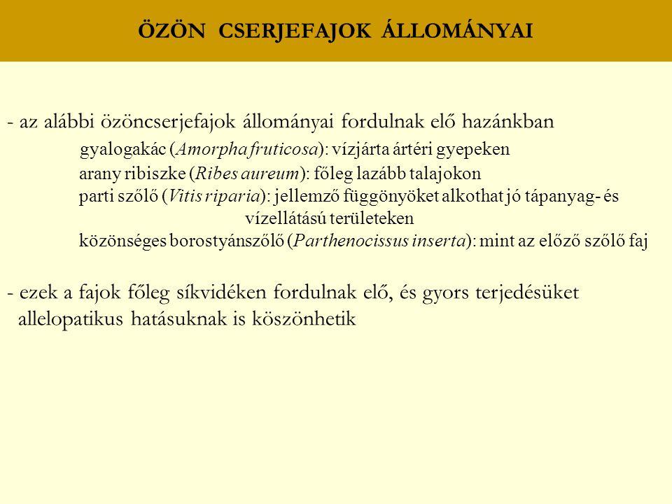 - az alábbi özöncserjefajok állományai fordulnak elő hazánkban gyalogakác (Amorpha fruticosa): vízjárta ártéri gyepeken arany ribiszke (Ribes aureum): főleg lazább talajokon parti szőlő (Vitis riparia): jellemző függönyöket alkothat jó tápanyag- és vízellátású területeken közönséges borostyánszőlő (Parthenocissus inserta): mint az előző szőlő faj - ezek a fajok főleg síkvidéken fordulnak elő, és gyors terjedésüket allelopatikus hatásuknak is köszönhetik