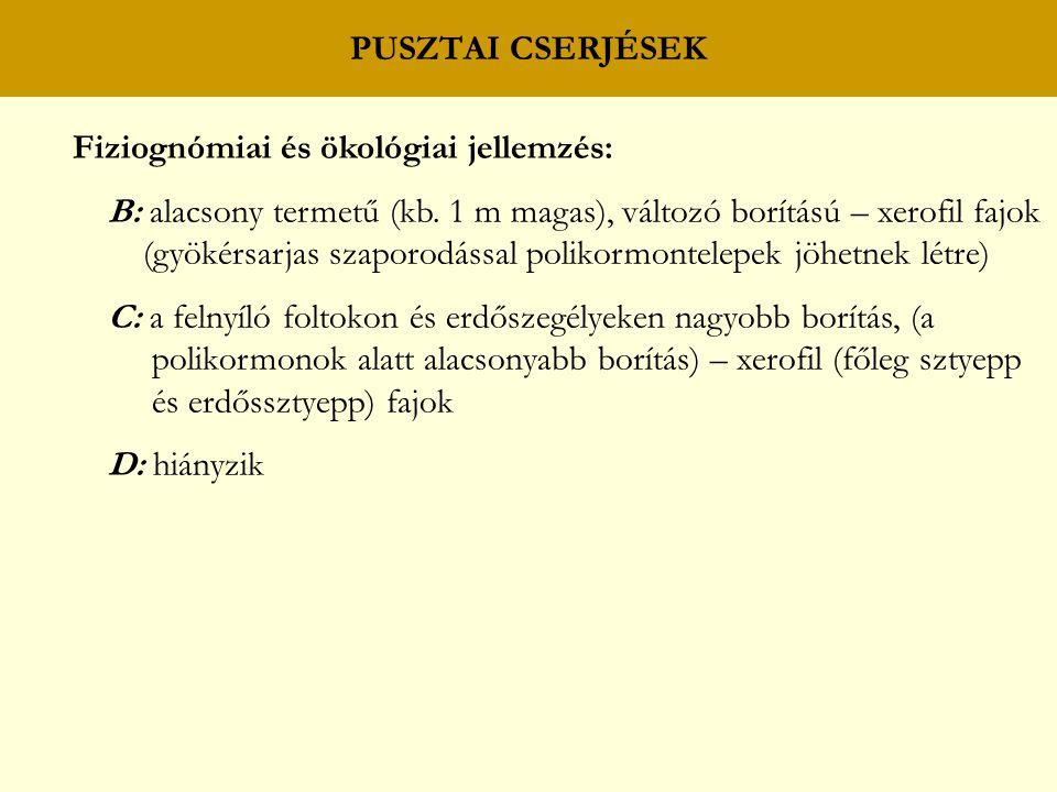 PUSZTAI CSERJÉSEK Fiziognómiai és ökológiai jellemzés: B: alacsony termetű (kb. 1 m magas), változó borítású – xerofil fajok (gyökérsarjas szaporodáss