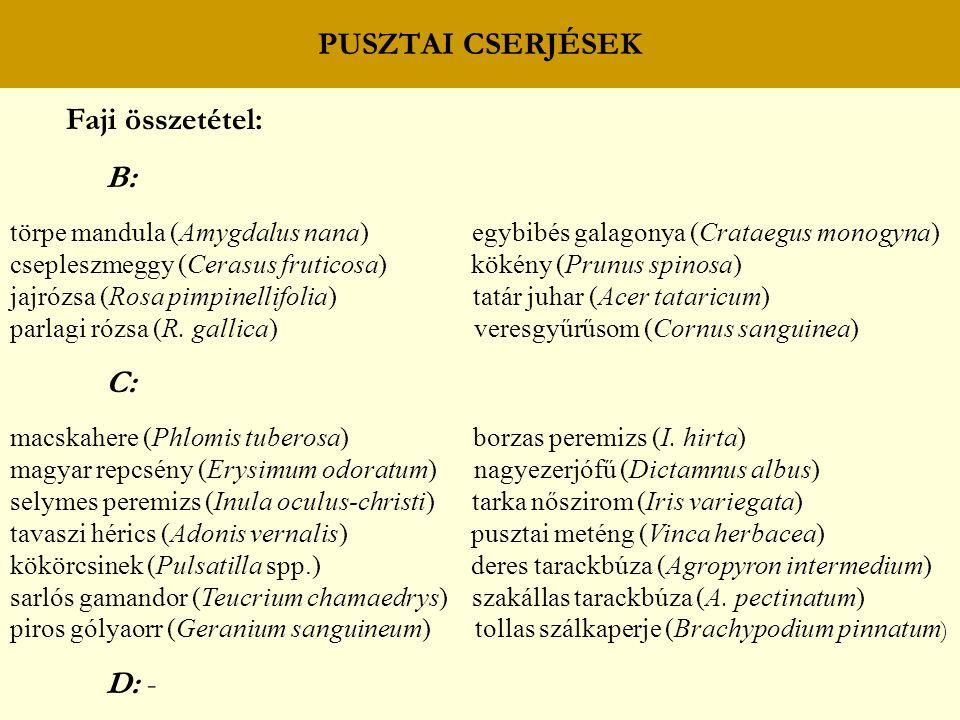 PUSZTAI CSERJÉSEK Faji összetétel: B: törpe mandula (Amygdalus nana) egybibés galagonya (Crataegus monogyna) csepleszmeggy (Cerasus fruticosa) kökény (Prunus spinosa) jajrózsa (Rosa pimpinellifolia) tatár juhar (Acer tataricum) parlagi rózsa (R.
