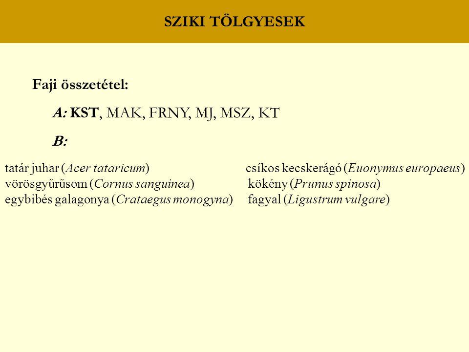 SZIKI TÖLGYESEK Faji összetétel: A: KST, MAK, FRNY, MJ, MSZ, KT B: tatár juhar (Acer tataricum) csíkos kecskerágó (Euonymus europaeus) vörösgyűrűsom (Cornus sanguinea) kökény (Prunus spinosa) egybibés galagonya (Crataegus monogyna) fagyal (Ligustrum vulgare)