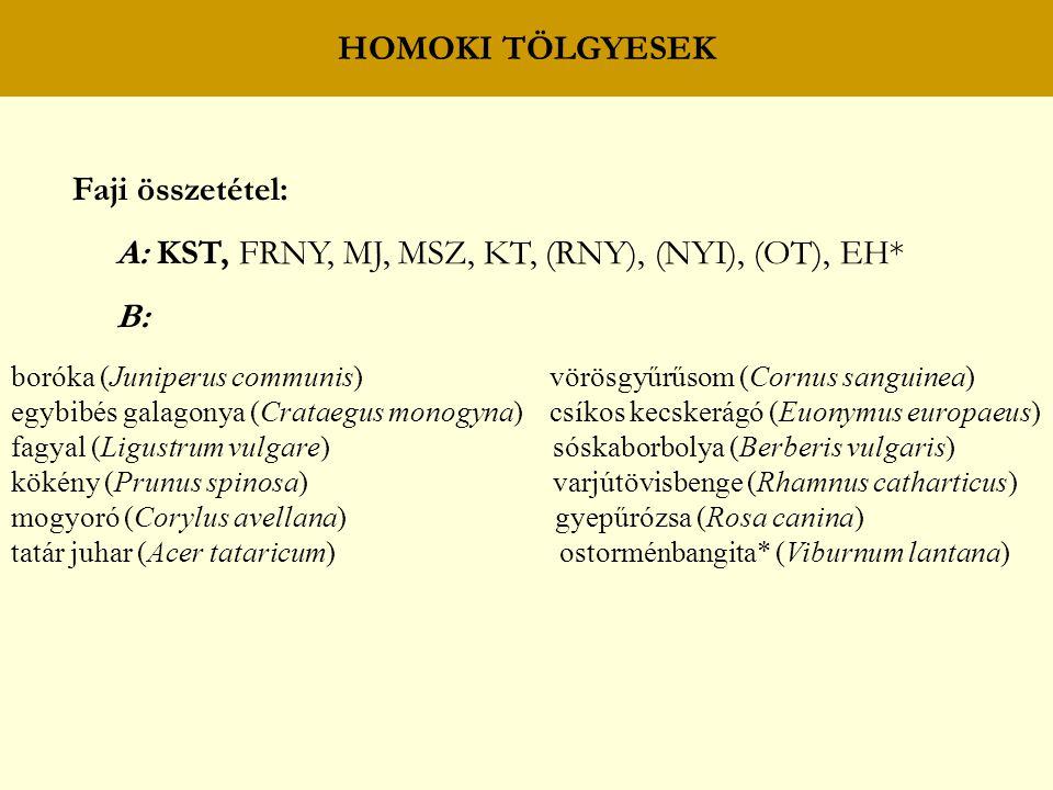 HOMOKI TÖLGYESEK Faji összetétel: A: KST, FRNY, MJ, MSZ, KT, (RNY), (NYI), (OT), EH* B: boróka (Juniperus communis) vörösgyűrűsom (Cornus sanguinea) e