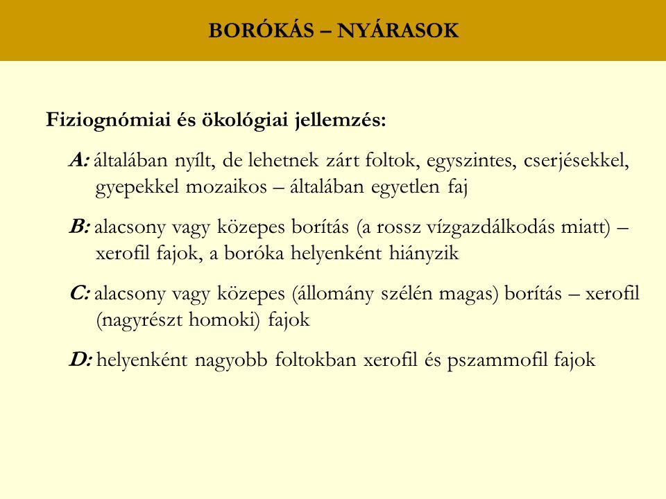 BORÓKÁS – NYÁRASOK Fiziognómiai és ökológiai jellemzés: A: általában nyílt, de lehetnek zárt foltok, egyszintes, cserjésekkel, gyepekkel mozaikos – ál