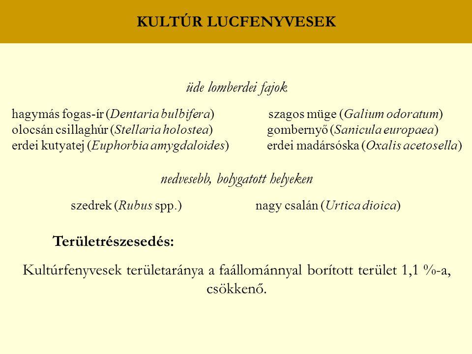 KULTÚR LUCFENYVESEK üde lomberdei fajok hagymás fogas-ír (Dentaria bulbifera) szagos müge (Galium odoratum) olocsán csillaghúr (Stellaria holostea) gombernyő (Sanicula europaea) erdei kutyatej (Euphorbia amygdaloides) erdei madársóska (Oxalis acetosella) nedvesebb, bolygatott helyeken szedrek (Rubus spp.) nagy csalán (Urtica dioica) Területrészesedés: Kultúrfenyvesek területaránya a faállománnyal borított terület 1,1 %-a, csökkenő.