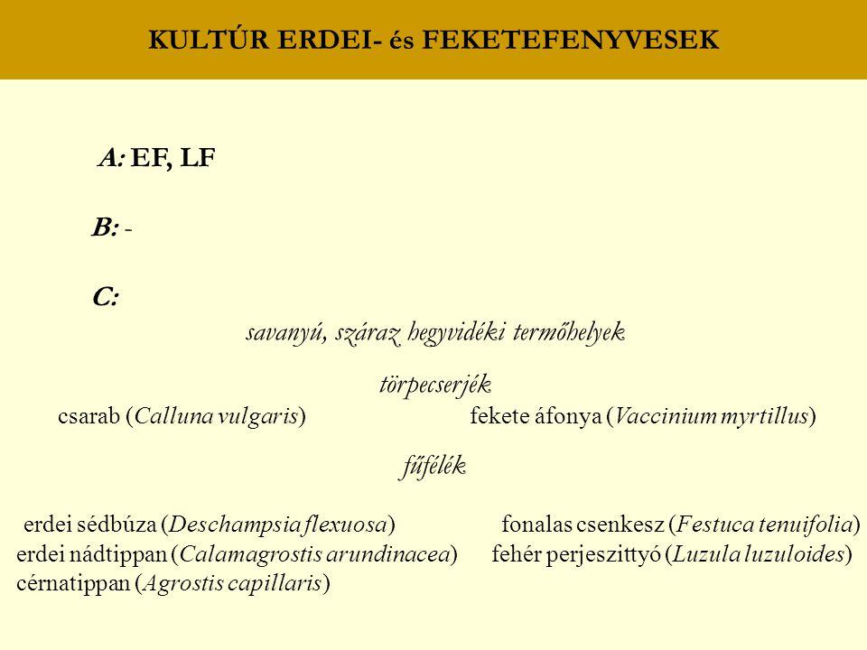 KULTÚR ERDEI- és FEKETEFENYVESEK A: EF, LF B: - C: savanyú, száraz hegyvidéki termőhelyek törpecserjék csarab (Calluna vulgaris) fekete áfonya (Vaccinium myrtillus) fűfélék erdei sédbúza (Deschampsia flexuosa) fonalas csenkesz (Festuca tenuifolia) erdei nádtippan (Calamagrostis arundinacea) fehér perjeszittyó (Luzula luzuloides) cérnatippan (Agrostis capillaris)