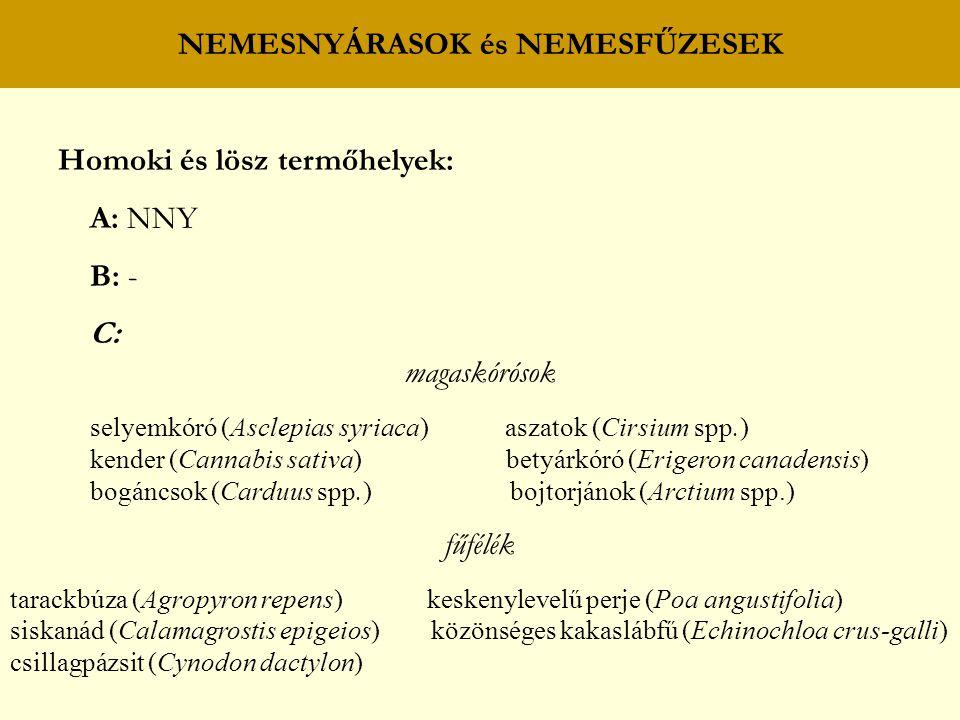 NEMESNYÁRASOK és NEMESFŰZESEK Homoki és lösz termőhelyek: A: NNY B: - C: magaskórósok selyemkóró (Asclepias syriaca) aszatok (Cirsium spp.) kender (Ca