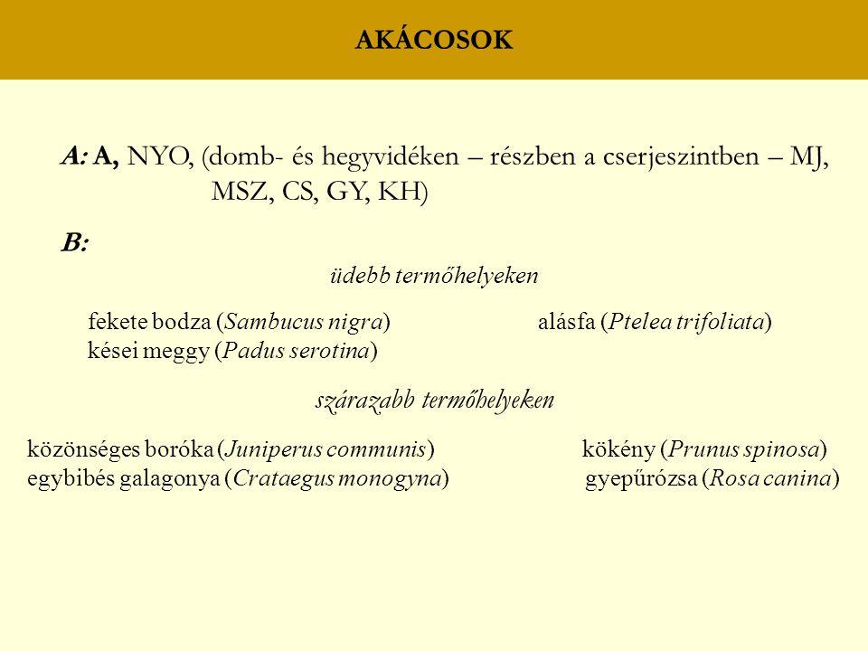 AKÁCOSOK A: A, NYO, (domb- és hegyvidéken – részben a cserjeszintben – MJ, MSZ, CS, GY, KH) B: üdebb termőhelyeken fekete bodza (Sambucus nigra) alásfa (Ptelea trifoliata) kései meggy (Padus serotina) szárazabb termőhelyeken közönséges boróka (Juniperus communis) kökény (Prunus spinosa) egybibés galagonya (Crataegus monogyna) gyepűrózsa (Rosa canina)