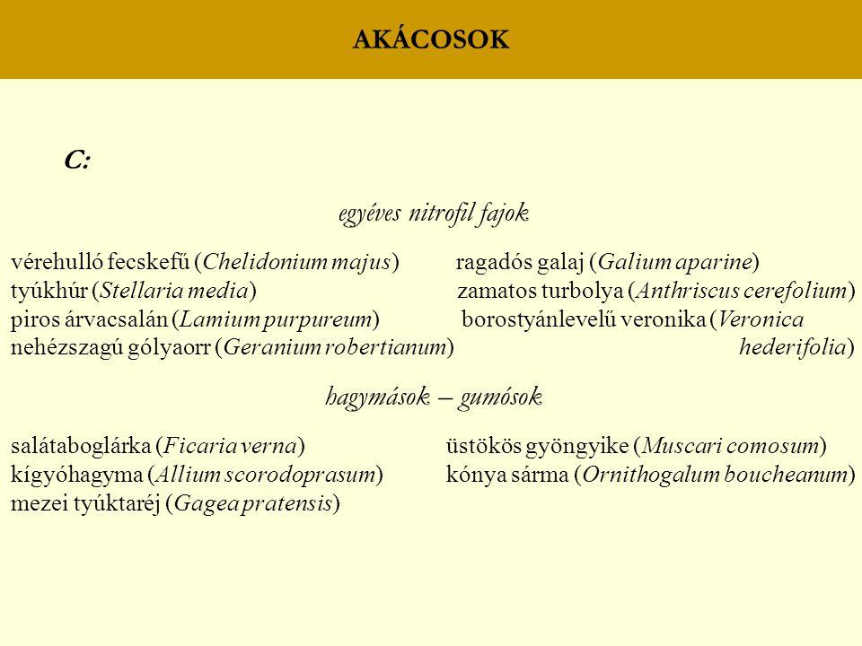 AKÁCOSOK C: egyéves nitrofil fajok vérehulló fecskefű (Chelidonium majus) ragadós galaj (Galium aparine) tyúkhúr (Stellaria media) zamatos turbolya (Anthriscus cerefolium) piros árvacsalán (Lamium purpureum) borostyánlevelű veronika (Veronica nehézszagú gólyaorr (Geranium robertianum) hederifolia) hagymások – gumósok salátaboglárka (Ficaria verna) üstökös gyöngyike (Muscari comosum) kígyóhagyma (Allium scorodoprasum) kónya sárma (Ornithogalum boucheanum) mezei tyúktaréj (Gagea pratensis)