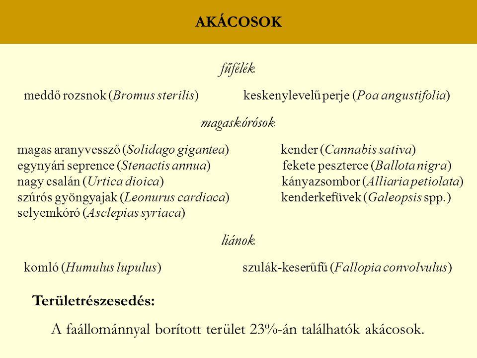 AKÁCOSOK fűfélék meddő rozsnok (Bromus sterilis) keskenylevelű perje (Poa angustifolia) magaskórósok magas aranyvessző (Solidago gigantea) kender (Cannabis sativa) egynyári seprence (Stenactis annua) fekete peszterce (Ballota nigra) nagy csalán (Urtica dioica) kányazsombor (Alliaria petiolata) szúrós gyöngyajak (Leonurus cardiaca) kenderkefüvek (Galeopsis spp.) selyemkóró (Asclepias syriaca) liánok komló (Humulus lupulus) szulák-keserűfű (Fallopia convolvulus) Területrészesedés: A faállománnyal borított terület 23%-án találhatók akácosok.
