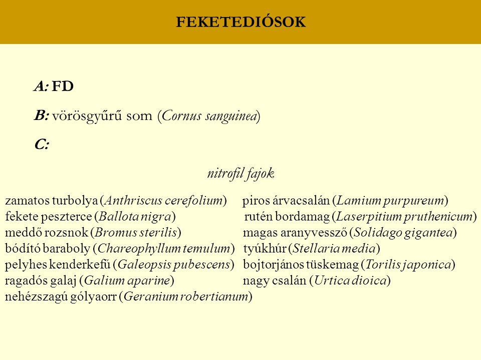 FEKETEDIÓSOK A: FD B: vörösgyűrű som (Cornus sanguinea) C: nitrofil fajok zamatos turbolya (Anthriscus cerefolium) piros árvacsalán (Lamium purpureum) fekete peszterce (Ballota nigra) rutén bordamag (Laserpitium pruthenicum) meddő rozsnok (Bromus sterilis) magas aranyvessző (Solidago gigantea) bódító baraboly (Chareophyllum temulum) tyúkhúr (Stellaria media) pelyhes kenderkefű (Galeopsis pubescens) bojtorjános tüskemag (Torilis japonica) ragadós galaj (Galium aparine) nagy csalán (Urtica dioica) nehézszagú gólyaorr (Geranium robertianum)