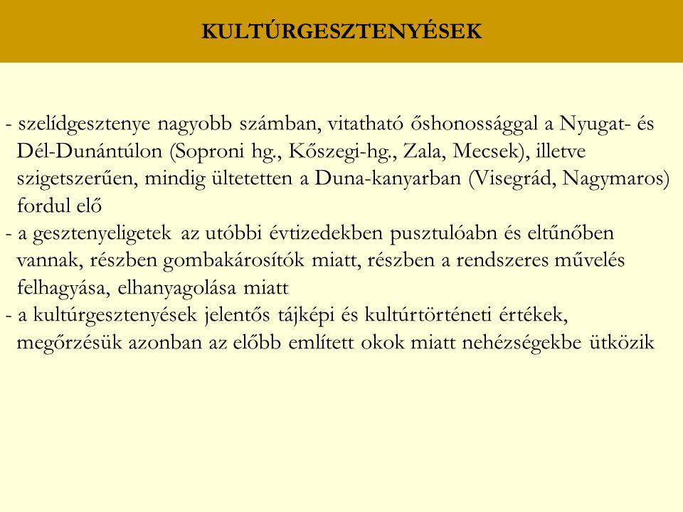 KULTÚRGESZTENYÉSEK - szelídgesztenye nagyobb számban, vitatható őshonossággal a Nyugat- és Dél-Dunántúlon (Soproni hg., Kőszegi-hg., Zala, Mecsek), illetve szigetszerűen, mindig ültetetten a Duna-kanyarban (Visegrád, Nagymaros) fordul elő - a gesztenyeligetek az utóbbi évtizedekben pusztulóabn és eltűnőben vannak, részben gombakárosítók miatt, részben a rendszeres művelés felhagyása, elhanyagolása miatt - a kultúrgesztenyések jelentős tájképi és kultúrtörténeti értékek, megőrzésük azonban az előbb említett okok miatt nehézségekbe ütközik