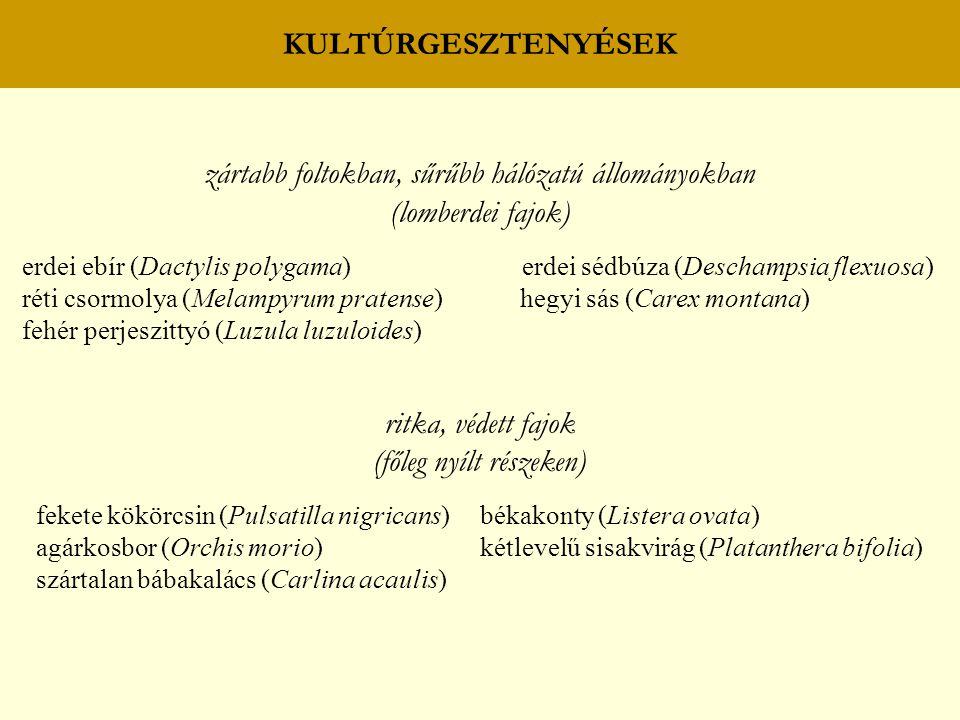 KULTÚRGESZTENYÉSEK zártabb foltokban, sűrűbb hálózatú állományokban (lomberdei fajok) erdei ebír (Dactylis polygama) erdei sédbúza (Deschampsia flexuosa) réti csormolya (Melampyrum pratense) hegyi sás (Carex montana) fehér perjeszittyó (Luzula luzuloides) ritka, védett fajok (főleg nyílt részeken) fekete kökörcsin (Pulsatilla nigricans) békakonty (Listera ovata) agárkosbor (Orchis morio) kétlevelű sisakvirág (Platanthera bifolia) szártalan bábakalács (Carlina acaulis)