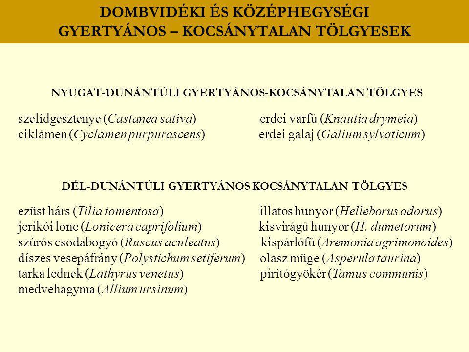 DOMBVIDÉKI ÉS KÖZÉPHEGYSÉGI GYERTYÁNOS – KOCSÁNYTALAN TÖLGYESEK NYUGAT-DUNÁNTÚLI GYERTYÁNOS-KOCSÁNYTALAN TÖLGYES szelídgesztenye (Castanea sativa) erd