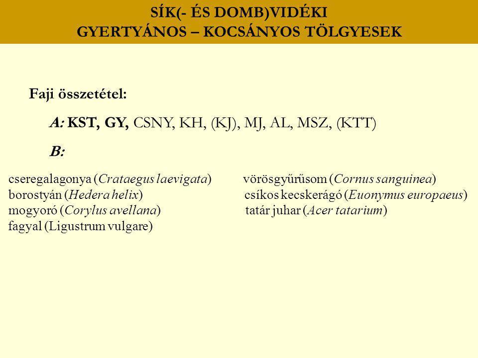 SÍK(- ÉS DOMB)VIDÉKI GYERTYÁNOS – KOCSÁNYOS TÖLGYESEK Faji összetétel: A: KST, GY, CSNY, KH, (KJ), MJ, AL, MSZ, (KTT) B: cseregalagonya (Crataegus lae