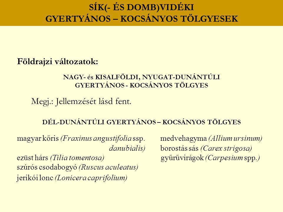 SÍK(- ÉS DOMB)VIDÉKI GYERTYÁNOS – KOCSÁNYOS TÖLGYESEK Földrajzi változatok: NAGY- és KISALFÖLDI, NYUGAT-DUNÁNTÚLI GYERTYÁNOS - KOCSÁNYOS TÖLGYES Megj.
