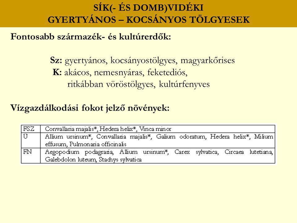 SÍK(- ÉS DOMB)VIDÉKI GYERTYÁNOS – KOCSÁNYOS TÖLGYESEK Fontosabb származék- és kultúrerdők: Sz: gyertyános, kocsányostölgyes, magyarkőrises K: akácos,