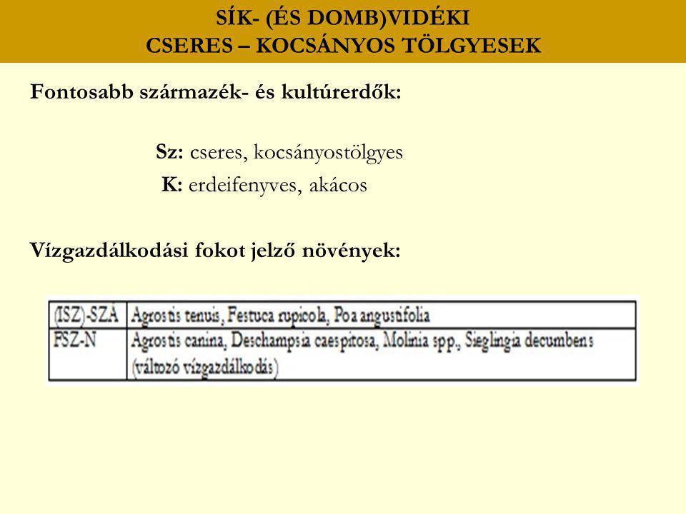 SÍK- (ÉS DOMB)VIDÉKI CSERES – KOCSÁNYOS TÖLGYESEK Fontosabb származék- és kultúrerdők: Sz: cseres, kocsányostölgyes K: erdeifenyves, akácos Vízgazdálk