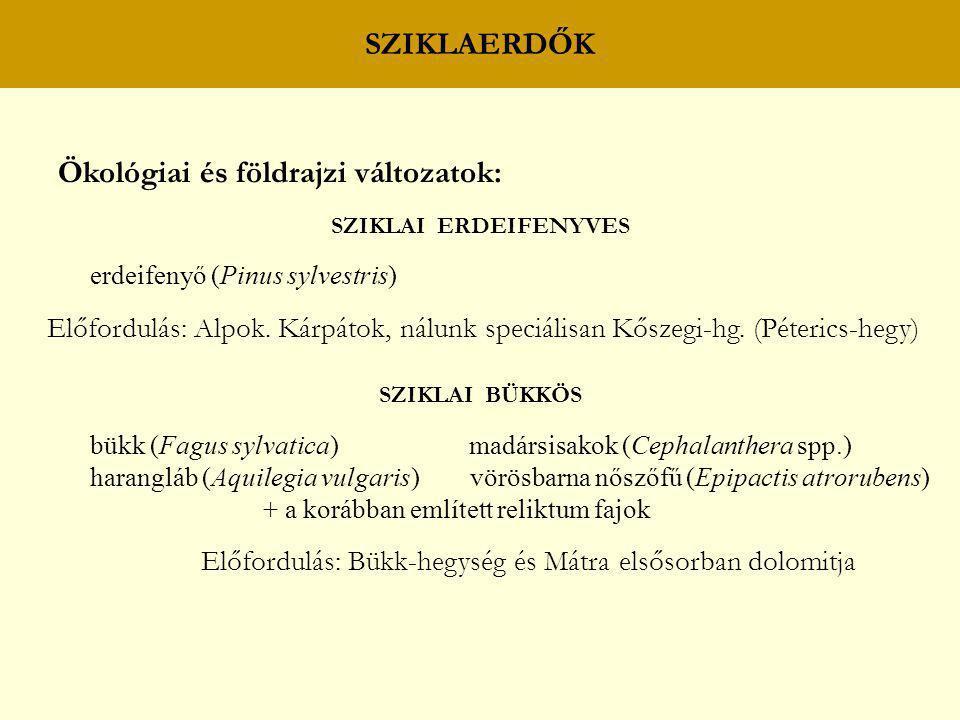 SZIKLAERDŐK Ökológiai és földrajzi változatok: SZIKLAI ERDEIFENYVES erdeifenyő (Pinus sylvestris) Előfordulás: Alpok. Kárpátok, nálunk speciálisan Kős
