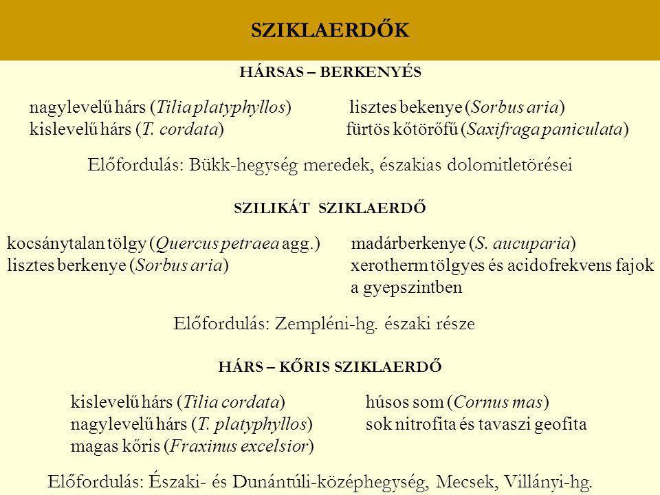 SZIKLAERDŐK HÁRSAS – BERKENYÉS nagylevelű hárs (Tilia platyphyllos) lisztes bekenye (Sorbus aria) kislevelű hárs (T. cordata) fürtös kőtörőfű (Saxifra