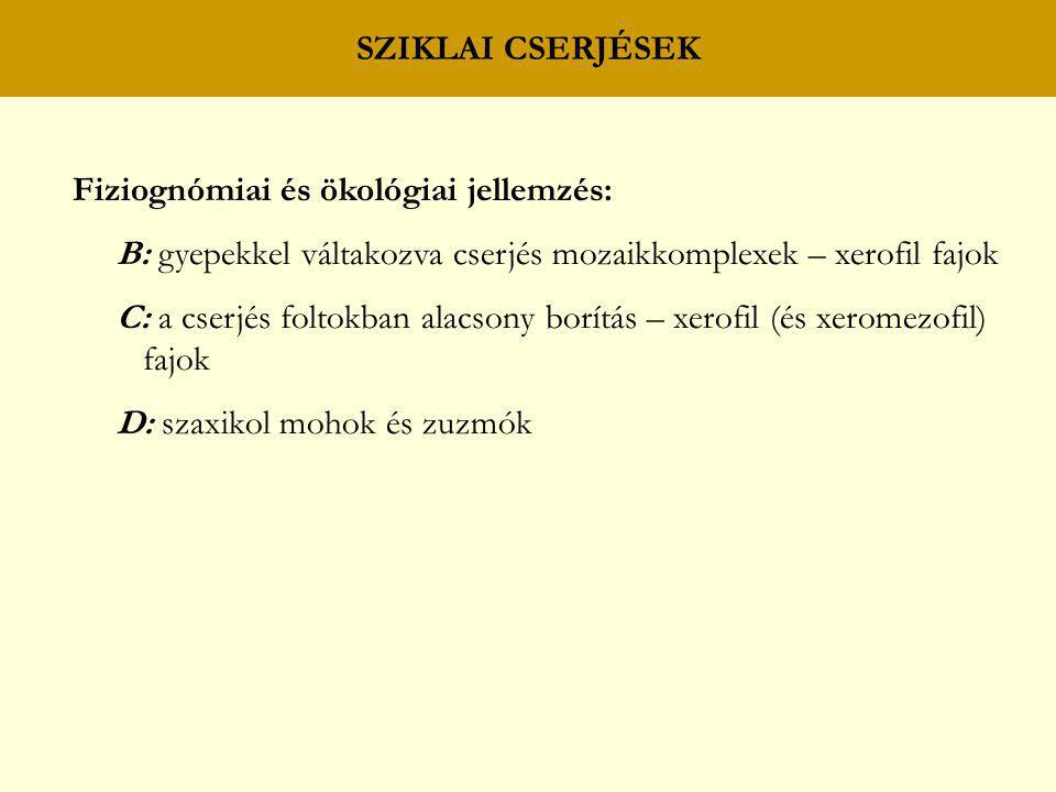 SZIKLAI CSERJÉSEK Fiziognómiai és ökológiai jellemzés: B: gyepekkel váltakozva cserjés mozaikkomplexek – xerofil fajok C: a cserjés foltokban alacsony
