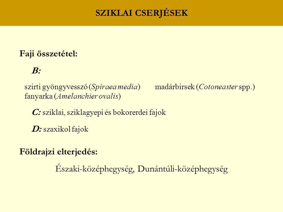 SZIKLAI CSERJÉSEK Faji összetétel: B: szirti gyöngyvessző (Spiraea media) madárbirsek (Cotoneaster spp.) fanyarka (Amelanchier ovalis) C: sziklai, szi