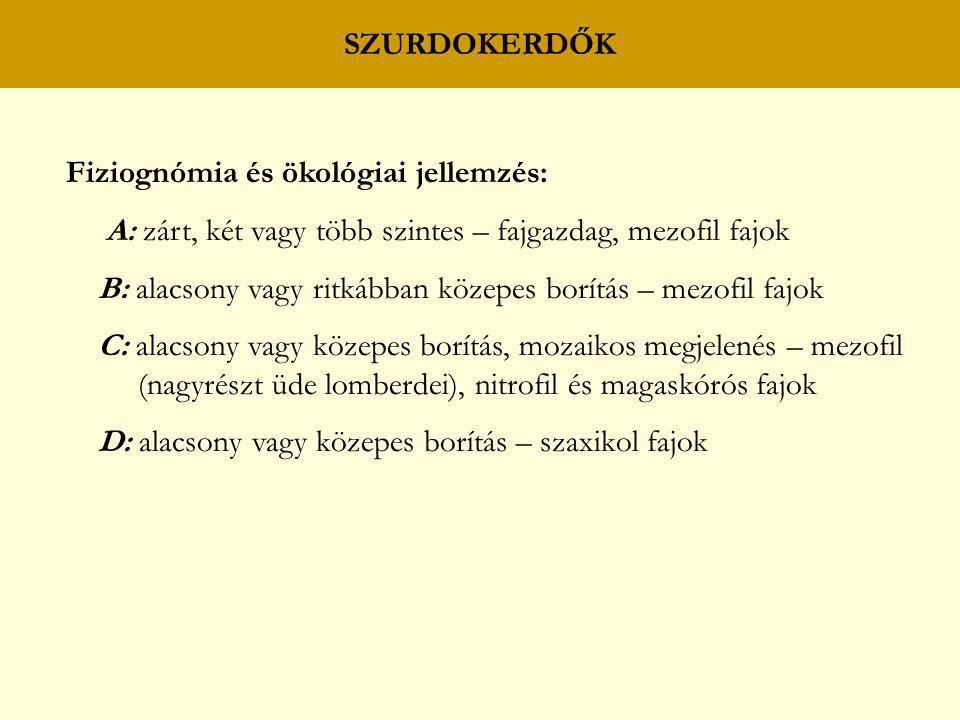 SZURDOKERDŐK Fiziognómia és ökológiai jellemzés: A: zárt, két vagy több szintes – fajgazdag, mezofil fajok B: alacsony vagy ritkábban közepes borítás