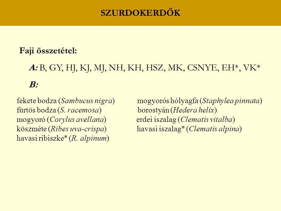 SZURDOKERDŐK Faji összetétel: A: B, GY, HJ, KJ, MJ, NH, KH, HSZ, MK, CSNYE, EH*, VK* B: fekete bodza (Sambucus nigra) mogyorós hólyagfa (Staphylea pin