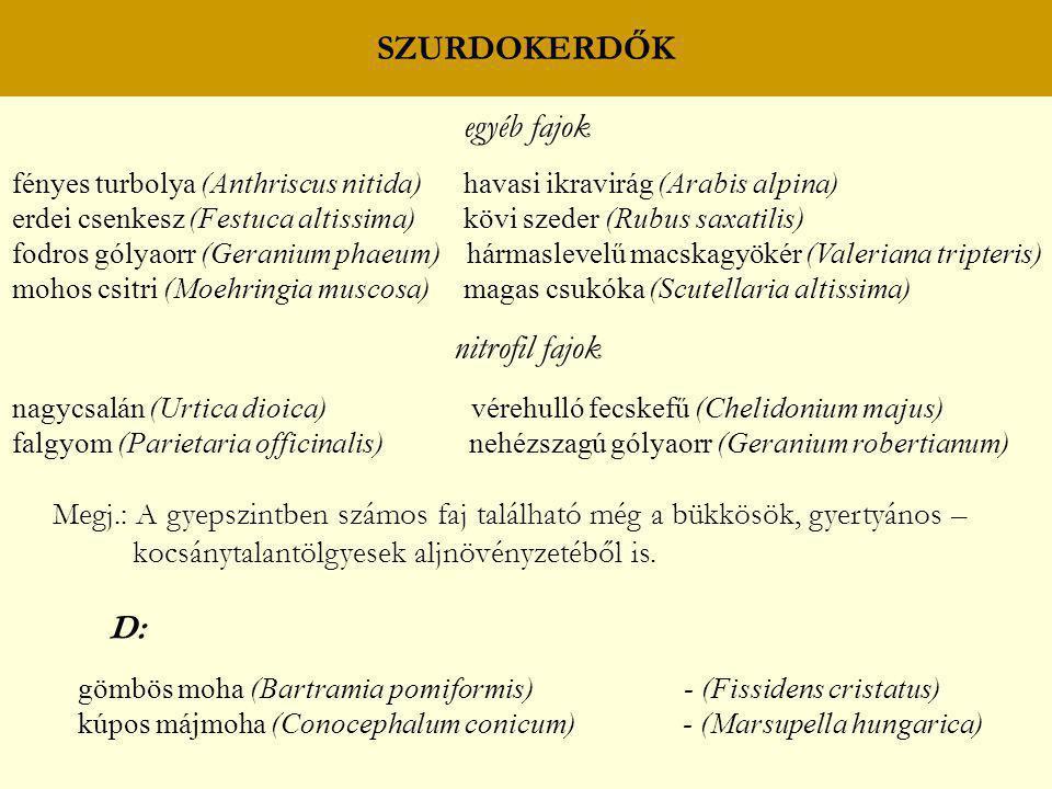 SZURDOKERDŐK egyéb fajok fényes turbolya (Anthriscus nitida) havasi ikravirág (Arabis alpina) erdei csenkesz (Festuca altissima) kövi szeder (Rubus sa