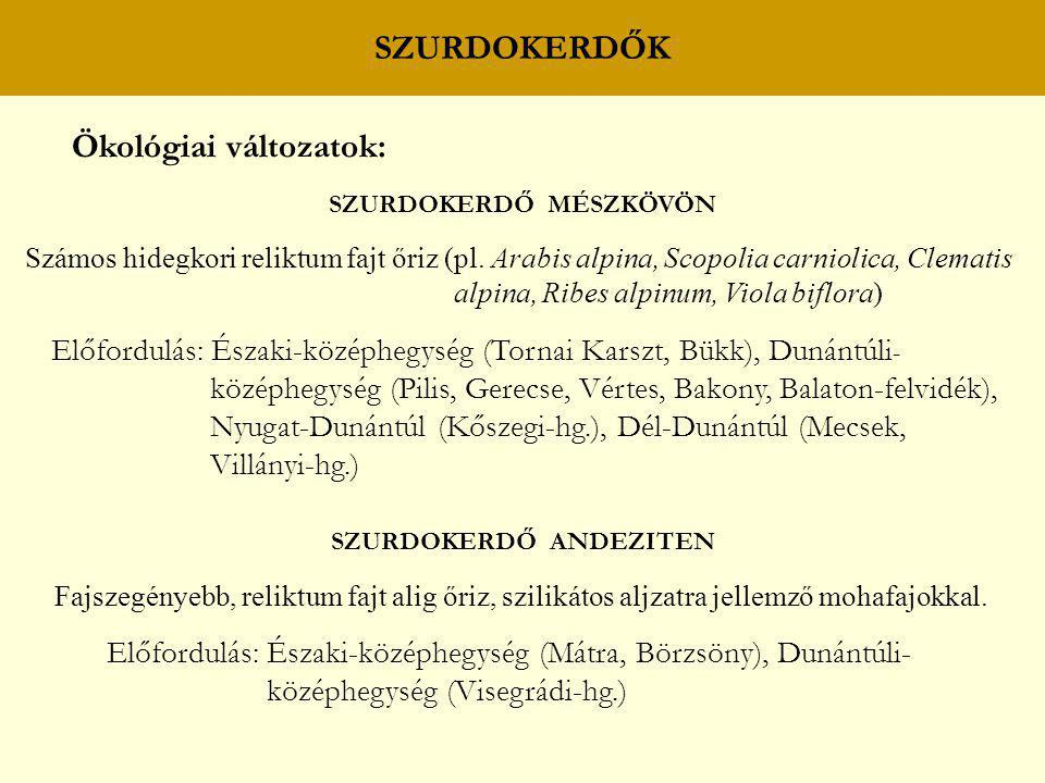 SZURDOKERDŐK Ökológiai változatok: SZURDOKERDŐ MÉSZKÖVÖN Számos hidegkori reliktum fajt őriz (pl. Arabis alpina, Scopolia carniolica, Clematis alpina,