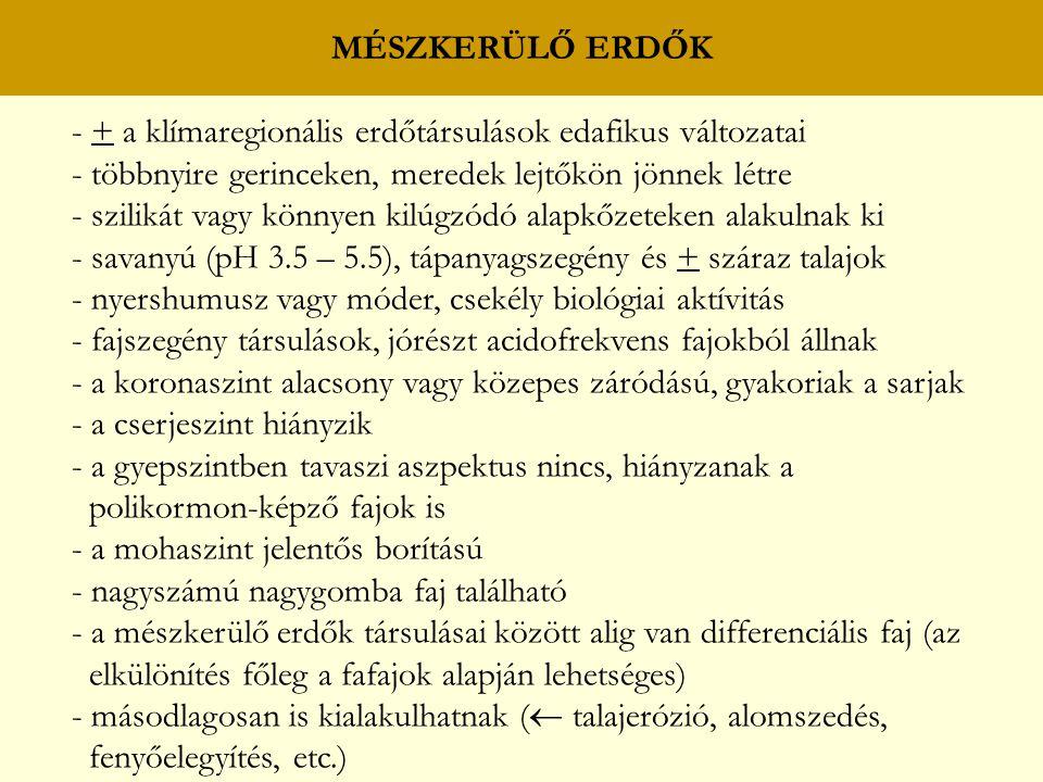 MÉSZKERÜLŐ GYERTYÁNOS – KOCSÁNYTALAN TÖLGYESEK C: mezofil fajok olocsán csillaghúr (Stellaria holostea) szagos müge (Asperula odorata) erdei madársóska (Oxalis acetosella) bükksás (Carex pilosa) ligeti perje (Poa nemoralis) egyvirágú gyöngyperje (Melica uniflora) erdei ebír (Dactylis polygama) D: a mohaszint fajai csaknem azonosak a mészkerülő bükkösök mohaszintjének fajaival seprőmoha (Dicranum scoparium) seprőcskemoha (Dicranella heteromalla) szőrmohák (Polytrichum spp.)