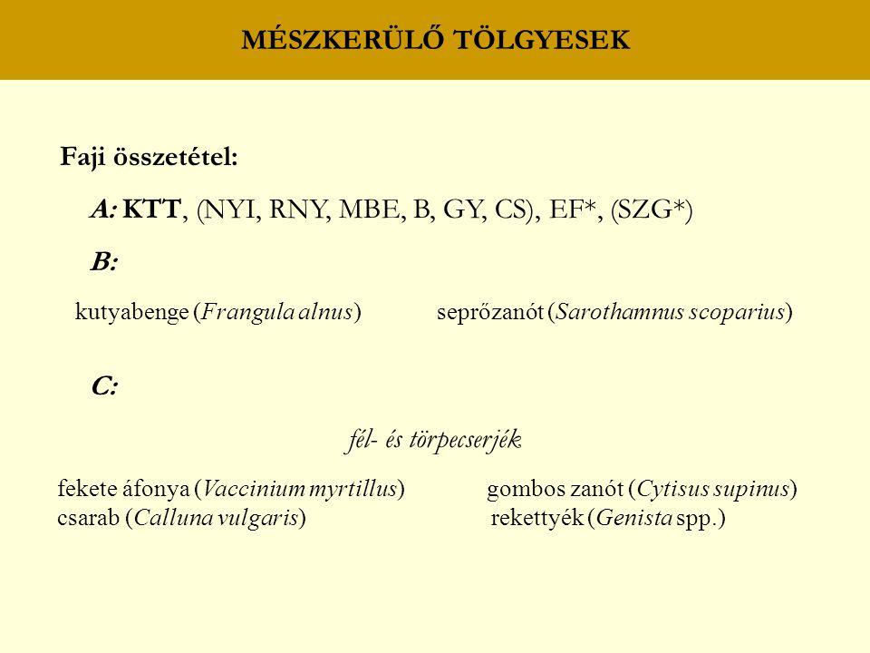 MÉSZKERÜLŐ TÖLGYESEK Faji összetétel: A: KTT, (NYI, RNY, MBE, B, GY, CS), EF*, (SZG*) B: kutyabenge (Frangula alnus) seprőzanót (Sarothamnus scoparius) C: fél- és törpecserjék fekete áfonya (Vaccinium myrtillus) gombos zanót (Cytisus supinus) csarab (Calluna vulgaris) rekettyék (Genista spp.)