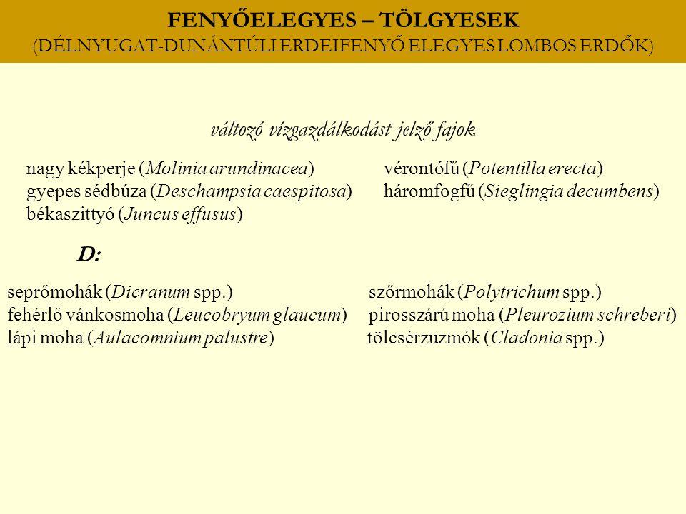 FENYŐELEGYES – TÖLGYESEK (DÉLNYUGAT-DUNÁNTÚLI ERDEIFENYŐ ELEGYES LOMBOS ERDŐK) változó vízgazdálkodást jelző fajok nagy kékperje (Molinia arundinacea) vérontófű (Potentilla erecta) gyepes sédbúza (Deschampsia caespitosa) háromfogfű (Sieglingia decumbens) békaszittyó (Juncus effusus) D: seprőmohák (Dicranum spp.) szőrmohák (Polytrichum spp.) fehérlő vánkosmoha (Leucobryum glaucum) pirosszárú moha (Pleurozium schreberi) lápi moha (Aulacomnium palustre) tölcsérzuzmók (Cladonia spp.)