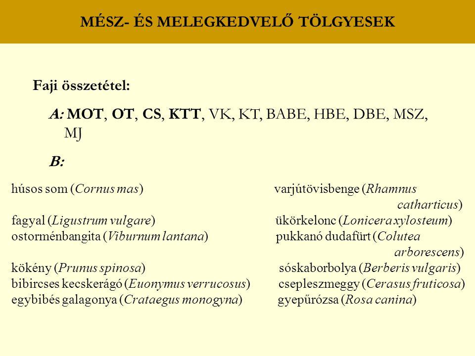 MÉSZ- ÉS MELEGKEDVELŐ TÖLGYESEK Faji összetétel: A: MOT, OT, CS, KTT, VK, KT, BABE, HBE, DBE, MSZ, MJ B: húsos som (Cornus mas) varjútövisbenge (Rhamnus catharticus) fagyal (Ligustrum vulgare) ükörkelonc (Lonicera xylosteum) ostorménbangita (Viburnum lantana) pukkanó dudafürt (Colutea arborescens) kökény (Prunus spinosa) sóskaborbolya (Berberis vulgaris) bibircses kecskerágó (Euonymus verrucosus) csepleszmeggy (Cerasus fruticosa) egybibés galagonya (Crataegus monogyna) gyepűrózsa (Rosa canina)
