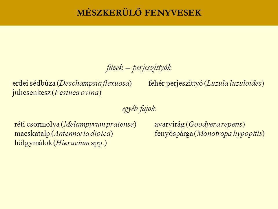 BOKORERDŐK BOKORERDŐ ANDEZITEN sajmeggy (Cerasus mahaleb) magyar perje (Poa pannonica) magas kőris (Fraxinus excelsior) keskenylevelű perje (P.