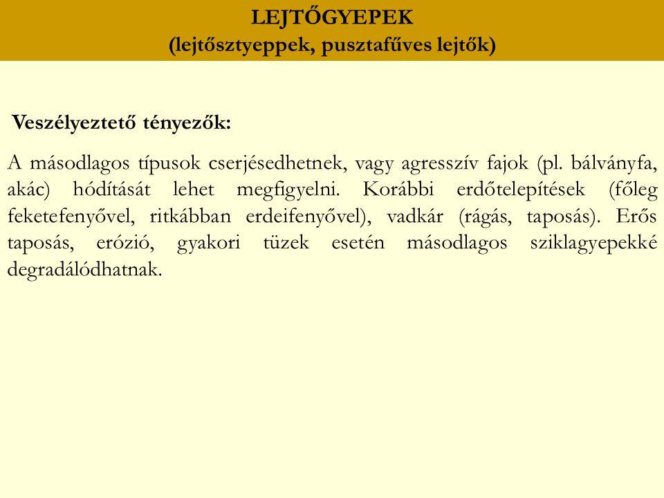 LEJTŐGYEPEK (lejtősztyeppek, pusztafűves lejtők) Veszélyeztető tényezők: A másodlagos típusok cserjésedhetnek, vagy agresszív fajok (pl. bálványfa, ak
