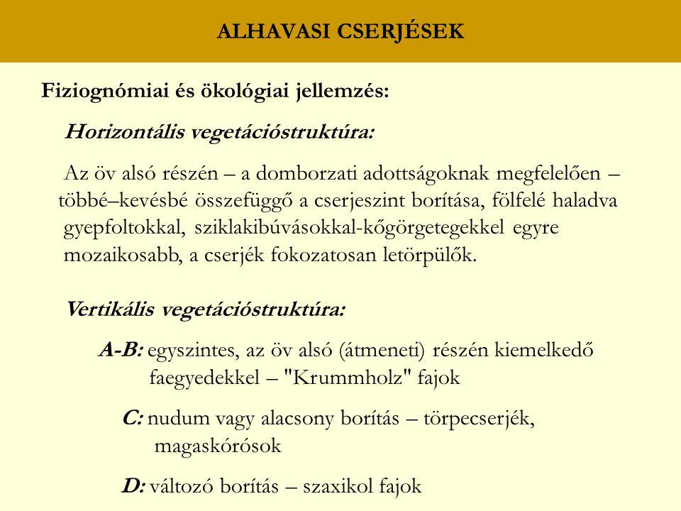 ALHAVASI CSERJÉSEK Fiziognómiai és ökológiai jellemzés: Horizontális vegetációstruktúra: Az öv alsó részén – a domborzati adottságoknak megfelelően –