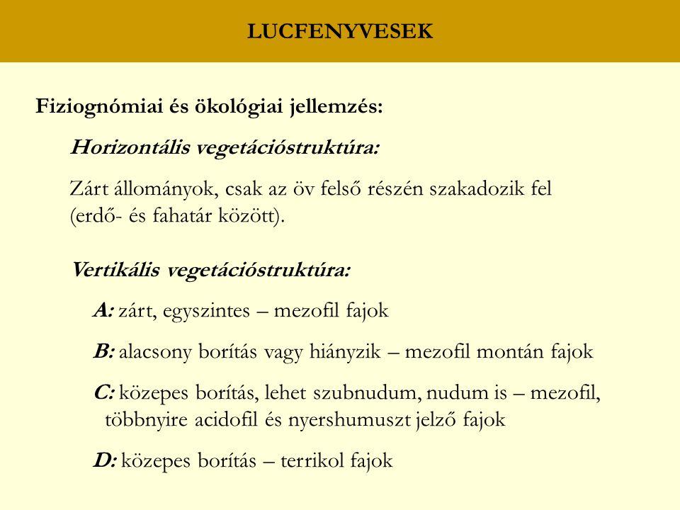 LUCFENYVESEK Fiziognómiai és ökológiai jellemzés: Horizontális vegetációstruktúra: Zárt állományok, csak az öv felső részén szakadozik fel (erdő- és f
