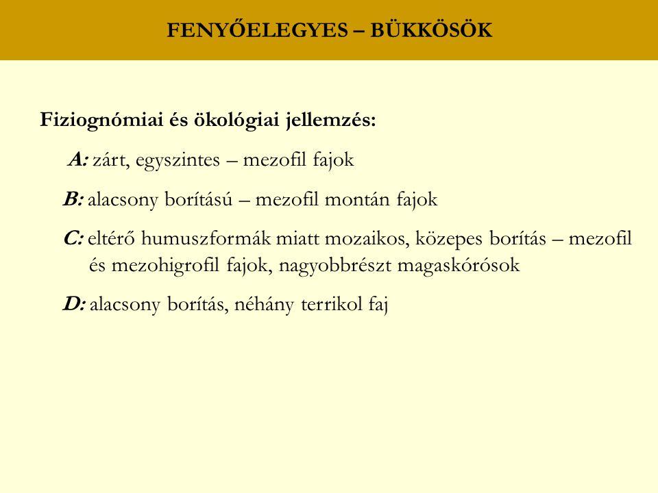 FENYŐELEGYES – BÜKKÖSÖK Fiziognómiai és ökológiai jellemzés: A: zárt, egyszintes – mezofil fajok B: alacsony borítású – mezofil montán fajok C: eltérő