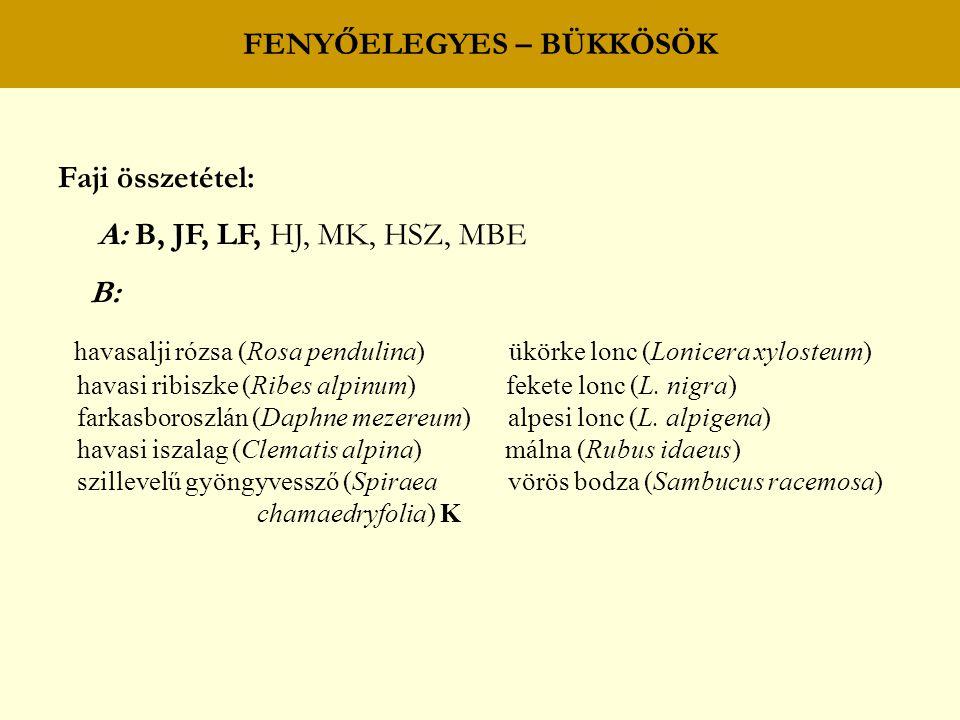 FENYŐELEGYES – BÜKKÖSÖK Faji összetétel: A: B, JF, LF, HJ, MK, HSZ, MBE B: havasalji rózsa (Rosa pendulina) ükörke lonc (Lonicera xylosteum) havasi ri