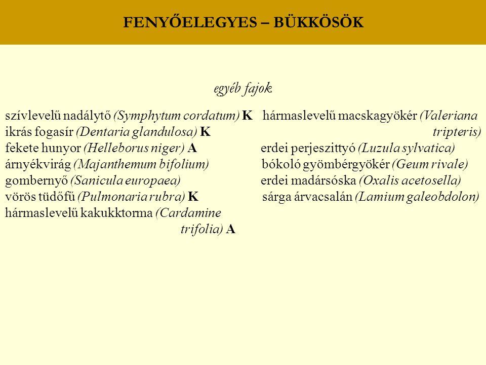 FENYŐELEGYES – BÜKKÖSÖK egyéb fajok szívlevelű nadálytő (Symphytum cordatum) K hármaslevelű macskagyökér (Valeriana ikrás fogasír (Dentaria glandulosa