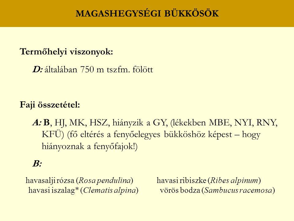 Termőhelyi viszonyok: D: általában 750 m tszfm. fölött Faji összetétel: A: B, HJ, MK, HSZ, hiányzik a GY, (lékekben MBE, NYI, RNY, KFÜ) (fő eltérés a