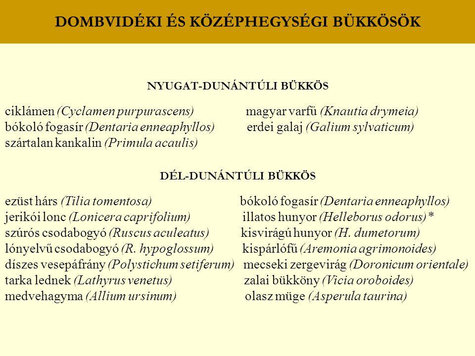 DOMBVIDÉKI ÉS KÖZÉPHEGYSÉGI BÜKKÖSÖK NYUGAT-DUNÁNTÚLI BÜKKÖS ciklámen (Cyclamen purpurascens) magyar varfű (Knautia drymeia) bókoló fogasír (Dentaria