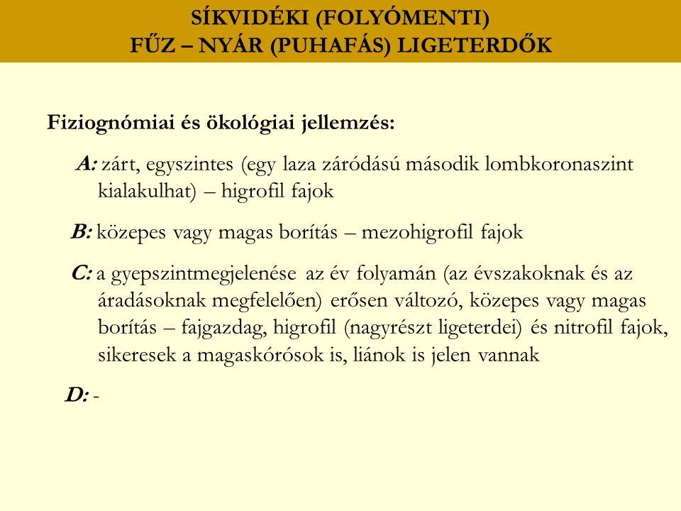 SÍKVIDÉKI (FOLYÓMENTI) FŰZ – NYÁR (PUHAFÁS) LIGETERDŐK Fiziognómiai és ökológiai jellemzés: A: zárt, egyszintes (egy laza záródású második lombkoronas