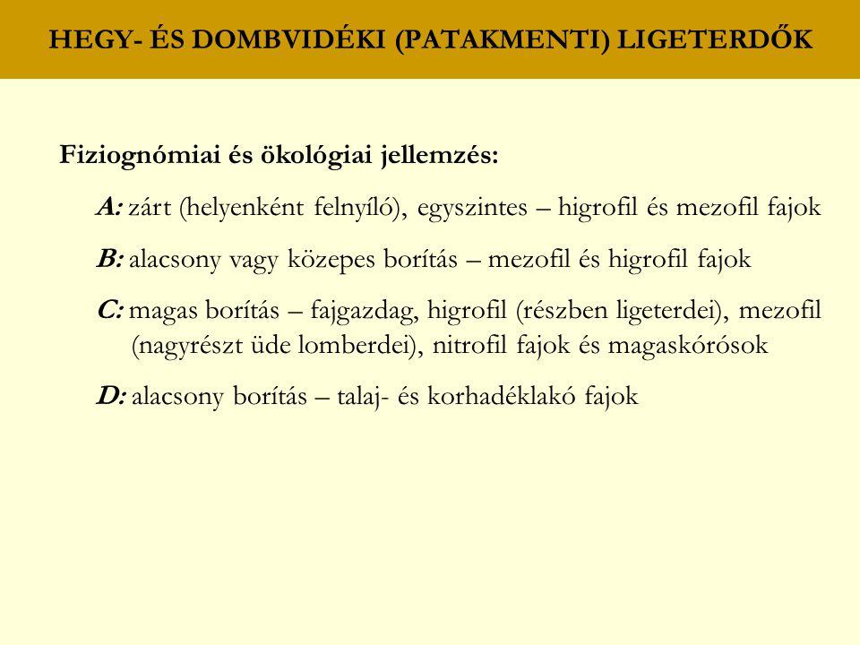 HEGY- ÉS DOMBVIDÉKI (PATAKMENTI) LIGETERDŐK Fiziognómiai és ökológiai jellemzés: A: zárt (helyenként felnyíló), egyszintes – higrofil és mezofil fajok
