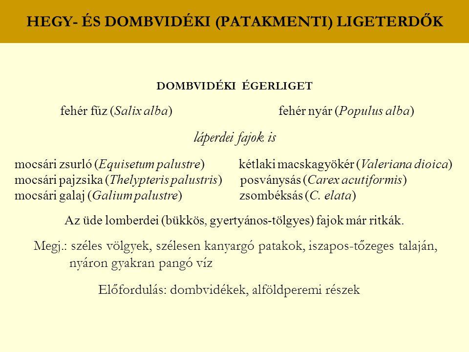 HEGY- ÉS DOMBVIDÉKI (PATAKMENTI) LIGETERDŐK DOMBVIDÉKI ÉGERLIGET fehér fűz (Salix alba) fehér nyár (Populus alba) láperdei fajok is mocsári zsurló (Eq