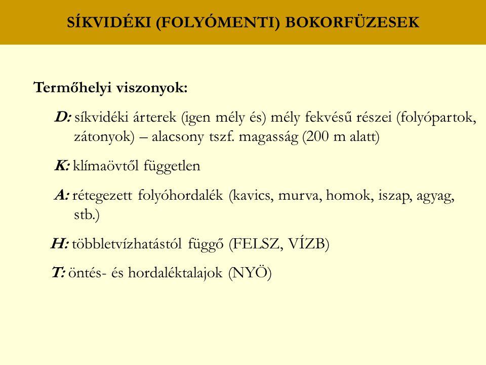 SÍKVIDÉKI (FOLYÓMENTI) TÖLGY – KŐRIS – SZIL (KEMÉNYFÁS) LIGETERDŐK Faji összetétel: A: KST, MAK, MSZ, VSZ, FRNY, AL, ZSM, MJ, (HSZ), (GY), (MK*), (HÉ*) B: cseregalagonya (Crataegus laevigata) hamvas szeder (Rubus caesius) vörösgyűrűsom (Cornus sanguinea) kutyabenge (Frangula alnus) mogyoró (Corylus avellana) tatár juhar (Acer tataricum) kányabangita (Viburnum opulus) vörös ribiszke (Ribes rubrum ssp.