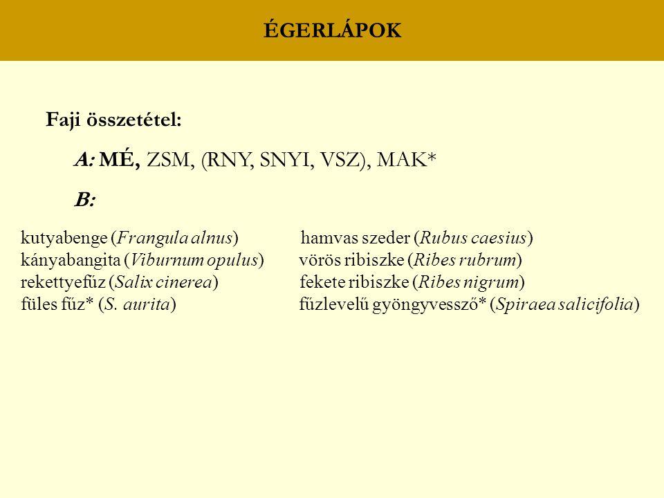ÉGERLÁPOK Faji összetétel: A: MÉ, ZSM, (RNY, SNYI, VSZ), MAK* B: kutyabenge (Frangula alnus) hamvas szeder (Rubus caesius) kányabangita (Viburnum opul
